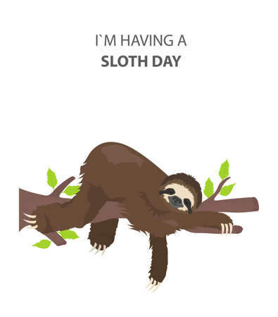 The story of one sloth. Outdoors. Funny cartoon sloths in different postures set. Vector illustration