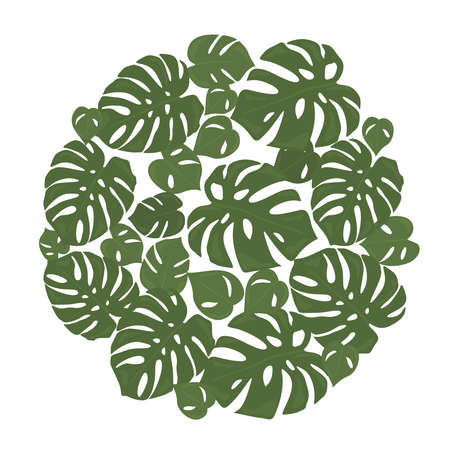 Monstera tropical forest leaves background. Green frame decoration. Vector illustration Иллюстрация
