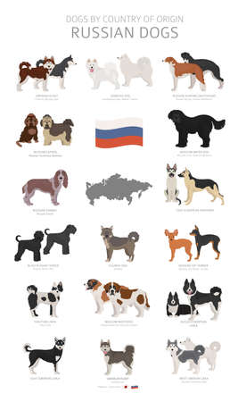 Dogs by country of origin. Russian dog breeds. Shepherds, hunting, herding, toy, working and service dogs  set.  Vector illustration Illustration