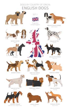 Perros por país de origen. Razas de perros ingleses. Perros pastores, de caza, de pastoreo, de juguete, de trabajo y de servicio. Ilustración vectorial Ilustración de vector