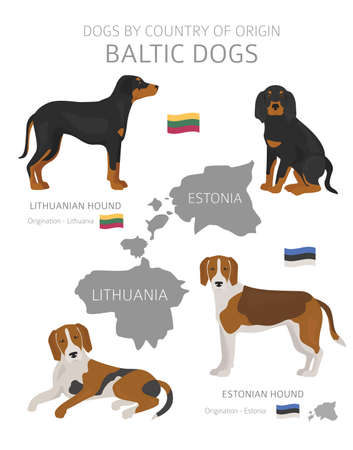 Dogs by country of origin. Baltic dog breeds. Shepherds, hunting, herding, toy, working and service dogs  set.  Vector illustration Illustration