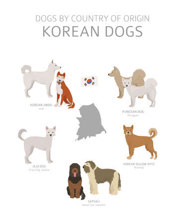 Dogs by country of origin. Korean dog breeds. Shepherds, hunting, herding, toy, working and service dogs  set.  Vector illustration