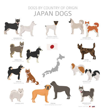 Dogs by country of origin. Japanese dog breeds. Shepherds, hunting, herding, toy, working and service dogs set. Vector illustration Vektorové ilustrace
