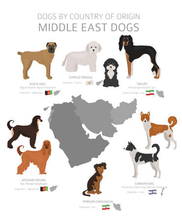 Dogs by country of origin. Middle East dog breeds. Shepherds, hunting, herding, toy, working and service dogs  set.  Vector illustration