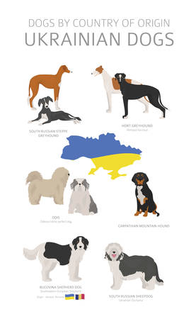 Dogs by country of origin. Ukrainian dog breeds. Shepherds, hunting, herding, toy, working and service dogs set. Vector illustration
