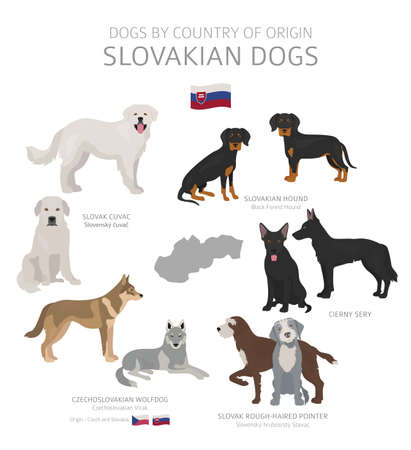 Dogs by country of origin. Slovakian dog breeds. Shepherds, hunting, herding, toy, working and service dogs  set.  Vector illustration