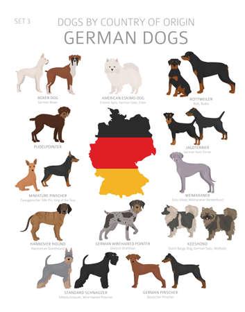 Perros por país de origen. Razas de perros alemanes. Perros pastores, de caza, de pastoreo, de juguete, de trabajo y de servicio. Ilustración vectorial