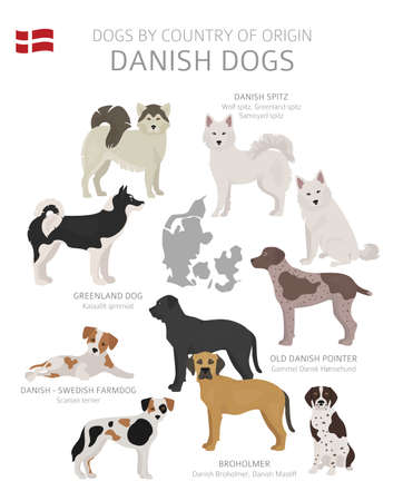 Perros por país de origen. Razas de perros daneses. Perros pastores, cazadores, pastores, de juguete, de trabajo y de servicio. Ilustración vectorial