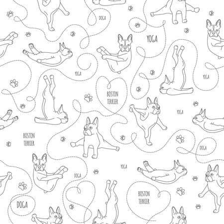Yoga dogs poses and exercises. French bulldog linear seamless pattern. Vector illustration