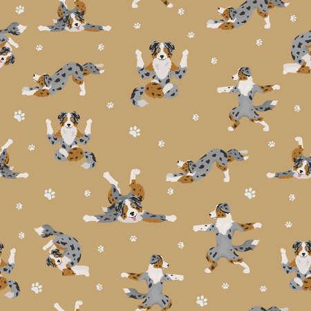 Yoga dogs poses and exercises. Australian shepherd seamless pattern. Vector illustration