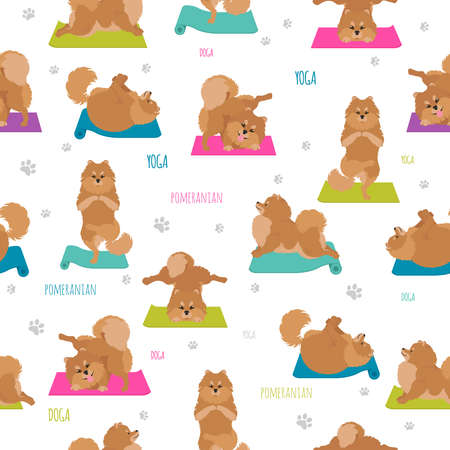 Yoga dogs poses and exercises. Pomeranian seamless pattern. Vector illustration Illustration