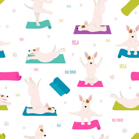 Yoga dogs poses and exercises. Bull terrier seamless pattern.