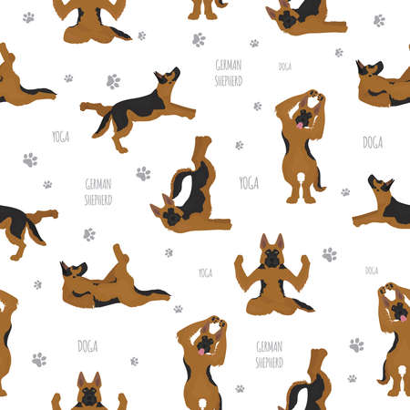 Yoga dogs poses and exercises. German shepherd seamless pattern. Vector illustration