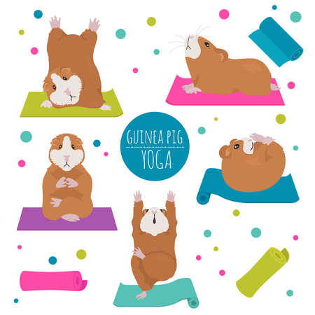 Guinea pig yoga poses and exercises. Cute cartoon clipart set. Vector illustration