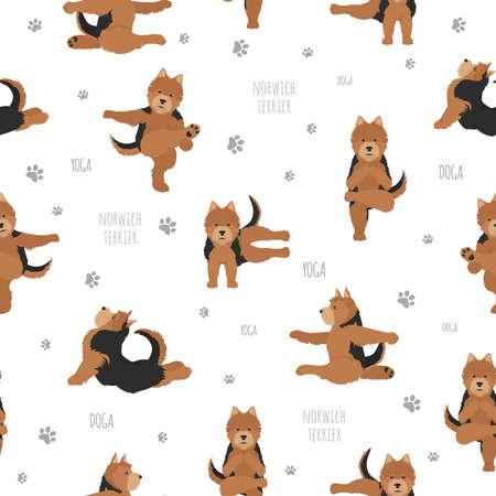Posturas y ejercicios de perros de yoga. Norwich terrier de patrones sin fisuras. Ilustración vectorial
