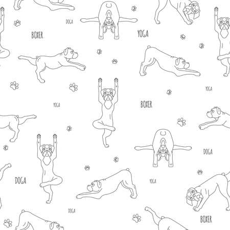Yoga dogs poses and exercises. Boxer dog seamless pattern. Simple line design. Vector illustration Illustration