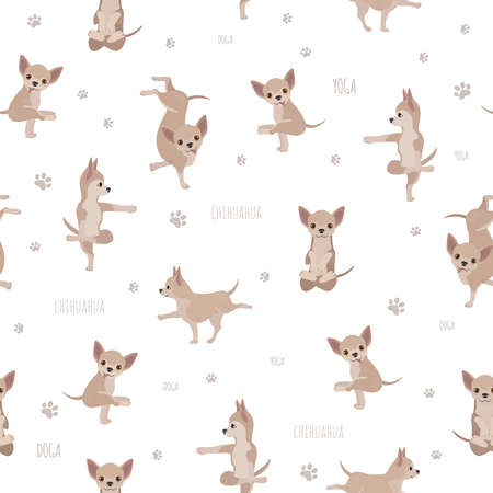 Yoga dogs poses and exercises. Chihuahua seamless pattern. Vector illustration Illustration