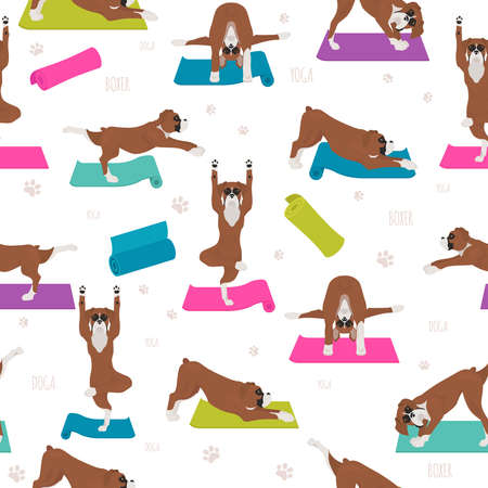 Yoga dogs poses and exercises. Boxer dog seamless pattern. Vector illustration