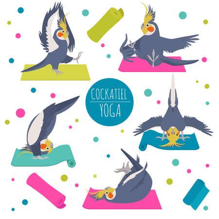 Cockatiel yoga poses and exercises. Cute cartoon clipart set. Vector illustration Illustration