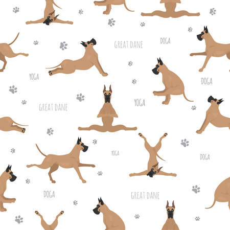 Yoga dogs poses and exercises. Great dane seamless pattern. Vector illustration