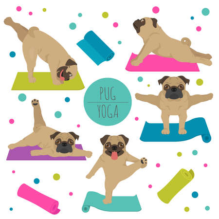 Yoga dogs poses and exercises. Pug clipart. Vector illustration