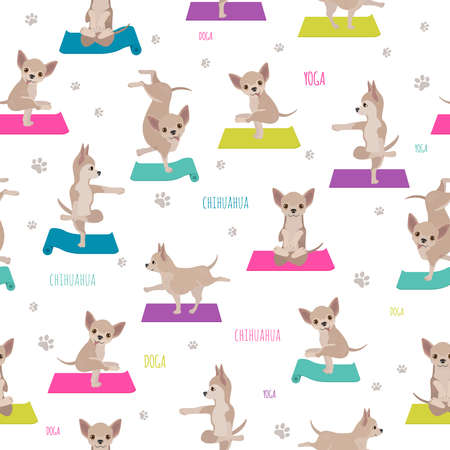 Yoga dogs poses and exercises. Chihuahua seamless pattern. Vector illustration