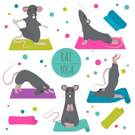 Rat yoga poses and exercises. Cute cartoon clipart set. Vector illustration