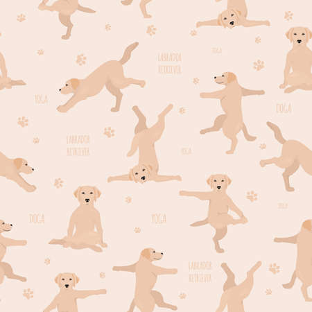 Yoga dogs poses and exercises. Labrador retriever seamless pattern. Vector illustration Stock Vector - 128503252