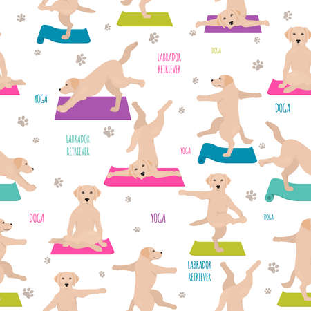 Yoga dogs poses and exercises. Labrador retriever seamless pattern. Vector illustration