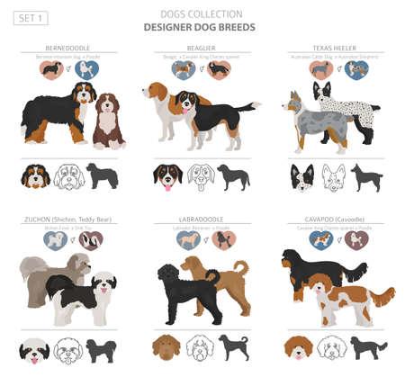 Perros de diseño, mestizos, colección de perros de mezcla híbrida aislado en blanco. Conjunto de imágenes prediseñadas de estilo plano. Ilustración vectorial