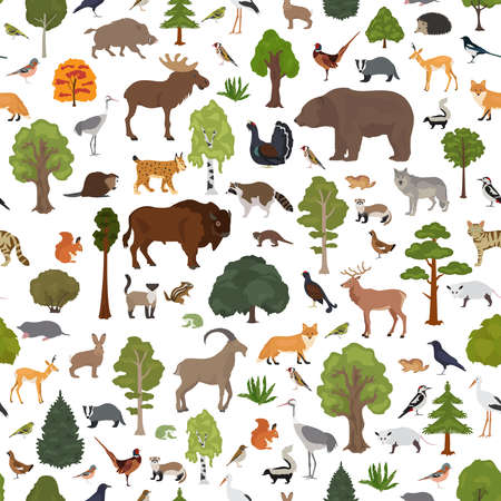 Temperate broadleaf forest and mixed forest biome seamless pattern.Terrestrial ecosystem world map. Animals, birds and plants graphic design. Vector illustration