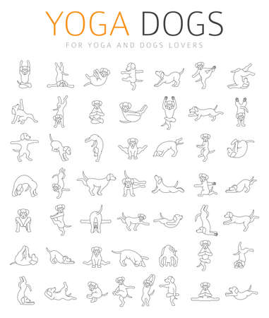 Yoga dogs poses and exercises doing clipart. Funny cartoon simple linear poster design. Vector illustration