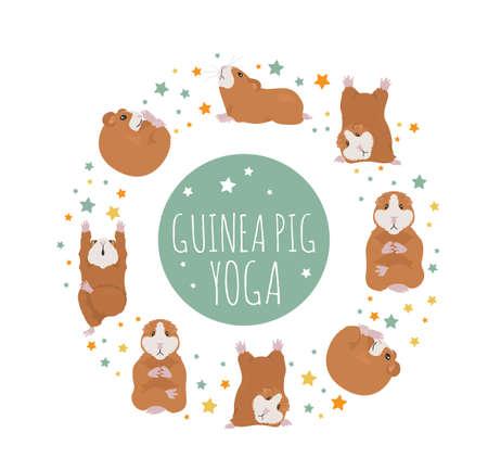 Meerschweinchen-Yoga-Posen und Übungen. Niedliche Cartoon-Clipart-Set. Vektor-Illustration