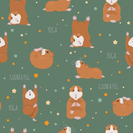 Guinea pig yoga poses and exercises. Cute cartoon seamless pattern. Vector illustration Illustration