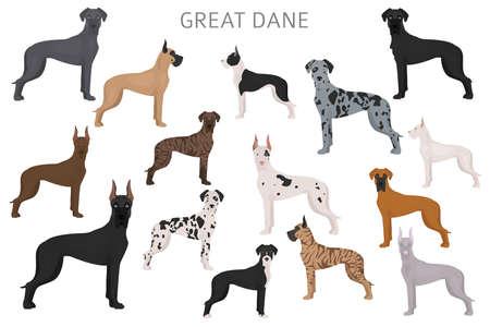 Grand danois. Différentes variétés d'ensemble de chien de couleur de pelage. Illustration vectorielle