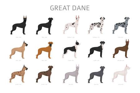 Grand danois. Différentes variétés d'ensemble de chien de couleur de pelage. Illustration vectorielle Vecteurs