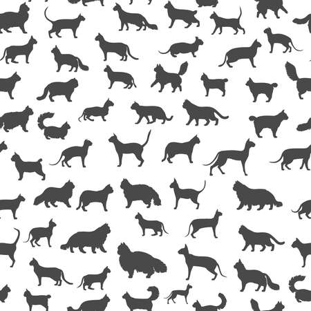 Cat breeds icon set flat style seamless pattern. Cartoon silhouettes cats characters collection. Vector illustration