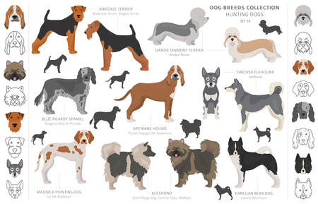 Hunting dogs collection isolated on white clipart. Flat style. Different color, portraits and silhouettes. Vector illustration Ilustrace
