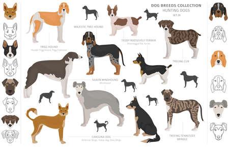 Collezione di cani da caccia isolata su clipart bianco. Stile piatto. Diversi colori, ritratti e sagome. Illustrazione vettoriale Vettoriali