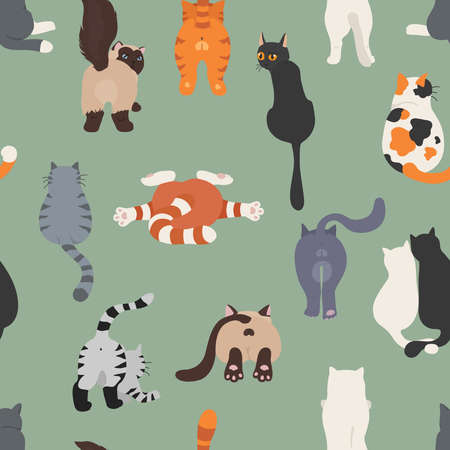 Cats poses behind. Cat`s butts. Flat design seamless pattern. Vector illustration