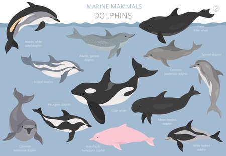 Dolphins set. Marine mammals collection. Cartoon flat style design. Vector illustration