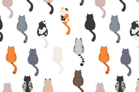 Cats poses behind. Cat`s butts. Flat design pattern. Vector illustration