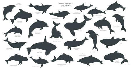Dolphins silhouettes set. Marine mammals collection. Cartoon flat style design. Vector illustration