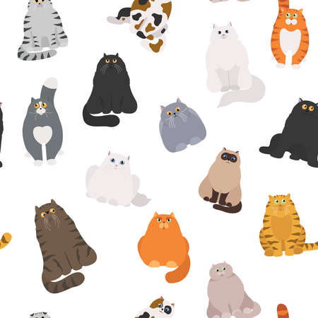 Cat poster. Cartoon cat characters seamless pattern. Different cat`s poses and emotions set. Flat color simple style design. Vector illustration