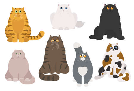 Cat poster. Cartoon cat characters collection. Different cat`s poses and emotions set. Flat color simple style design. Vector illustration