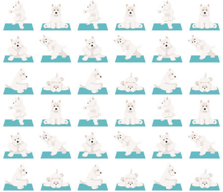Yoga dogs poses and exercises seamless pattern design. West Highland White Terrier clipart. Vector illustration 矢量图像