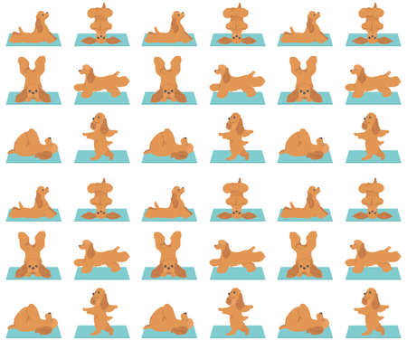 Yoga dogs poses and exercises seamless pattern design. American cocker spaniel clipart. Vector illustration