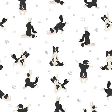 Yoga dogs poses and exercises seamless pattern design. Border collie clipart. Vector illustration