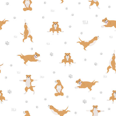 Yoga dogs poses and exercises seamless pattern design. Staffordshire bull terrier clipart. Vector illustration