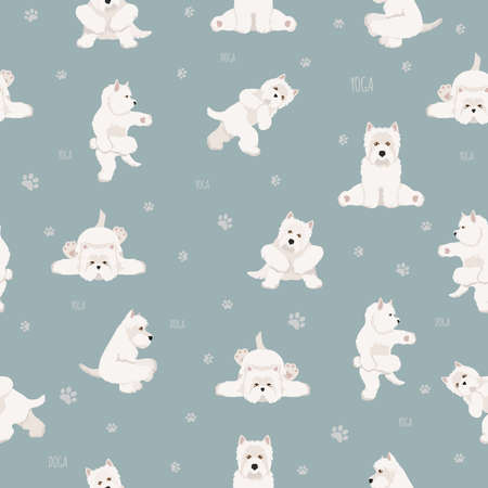 Yoga dogs poses and exercises seamless pattern design. West Highland White Terrier clipart. Vector illustration Illustration